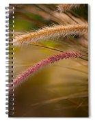 Purple Fountain Grass Ornamental Decorative Foxtail Home Decor Print Spiral Notebook