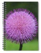 Purple Fuzz Spiral Notebook