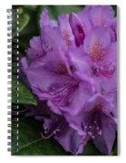Purple Glory Spiral Notebook