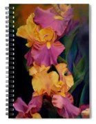 Purple Gold Irises  Spiral Notebook