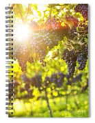 Purple Grapes In Sunshine Spiral Notebook