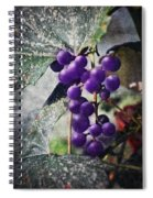 Purple Grapes - Oil Effect Spiral Notebook