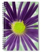 Purple Haze - Photopower 2858 Spiral Notebook