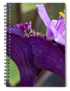 Purple Heart Flower Spiral Notebook