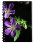 Purple Highlights Spiral Notebook