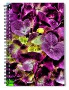 Purple Hortensia After Summer Rain Spiral Notebook