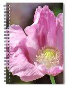 Purple Iceland Poppy Spiral Notebook