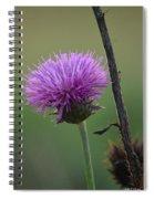 Purple In Nature Spiral Notebook