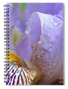 Purple Iris - 3 Spiral Notebook