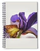 Purple Iris Macro 5 Spiral Notebook