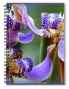 Purple Irises Closeup Spiral Notebook