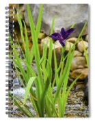 Purple Irises Growing In Waterfall Spiral Notebook