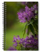 Purple Light Spiral Notebook