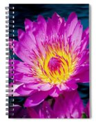 Purple Lily On The Water Spiral Notebook