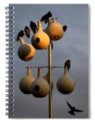 Purple Martin Twilight Spiral Notebook