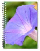 Purple Morning Glory Spiral Notebook