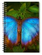 Purple Morpho Butterfly Spiral Notebook