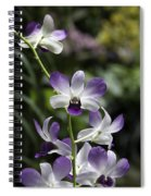 Purple Orchid Flower Inside The National Orchid Garden In Singapore Spiral Notebook