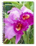 Purple Cattleya Orchids Spiral Notebook