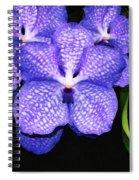 Purple Orchids - Flower Art By Sharon Cummings Spiral Notebook