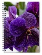 Purple Orchids Spiral Notebook