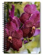 Purple Orchids With Bokeh Spiral Notebook