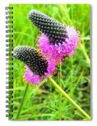 Purple Pair Spiral Notebook