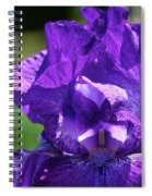 Purple Pandora Spiral Notebook