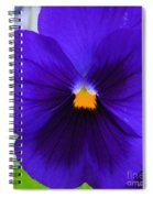 Purple Pansy Closeup Spiral Notebook