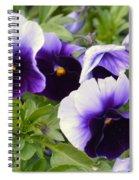 Purple Pansy Melody Spiral Notebook