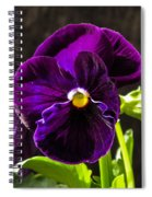 Purple Pansy Spiral Notebook