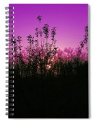 Purple Paradise Sunset By Diana Sainz Spiral Notebook