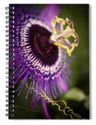 Purple Passion Flower Spiral Notebook