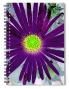 Purple Passion - Photopower 1605 Spiral Notebook