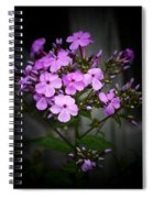 Purple Philox Spiral Notebook
