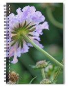 Purple Pincushion Flower Spiral Notebook