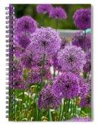 Purple Pom Poms Spiral Notebook