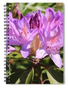 Purple Rhododendron Spiral Notebook
