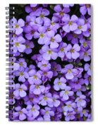 Purple Rockcress Spiral Notebook