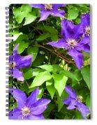 Purple Rush Spiral Notebook
