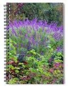 Purple Salvia In The Garden Spiral Notebook