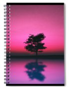 Purple Sky... Spiral Notebook