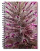 Purple Spike Spiral Notebook