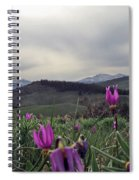 Purple Spring In The Big Horns Spiral Notebook