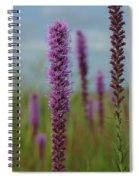 Purple Star Spiral Notebook
