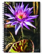 Purple Star Water Lily  By Diana Sainz Spiral Notebook