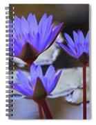Purple Times Three Spiral Notebook