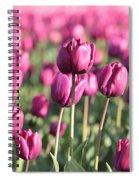 Purple Tulip Standouts Spiral Notebook