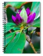 Purple Turtle Head Flower Spiral Notebook