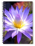 Purple Waterlily With Fall Lilypads Spiral Notebook